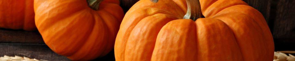 pumpkins_w1